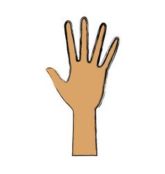 Human hand five finger palm open gesture vector