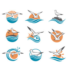 Icons of seagulls vector