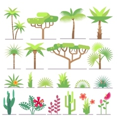 Different types of tropical plants trees flowers vector