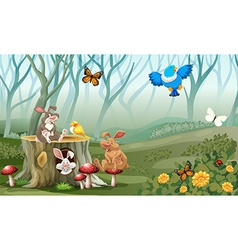 Rabbits and birds living in the forest vector