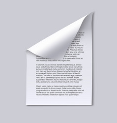 paper sheet with text and page curl vector image