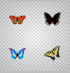 Realistic spicebush bluewing checkerspot and vector