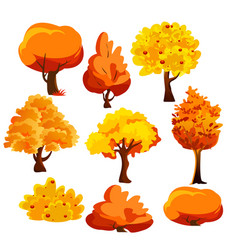 bright colorful autumn vector image