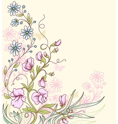 Sweet pea flowers vector