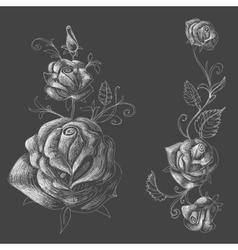 Roses design elements black background vector