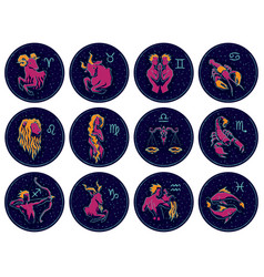 zodiac signs on night vector image vector image