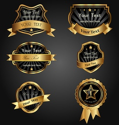 set black gold-framed labels vector image