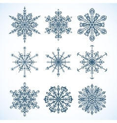 Collection of snowflakes vector