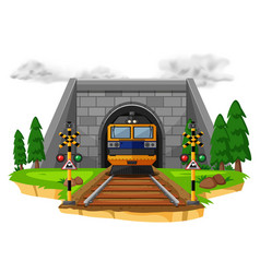Train ride on the railroad vector