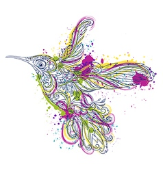 hummingbird floral ornament and watercolor splash vector image