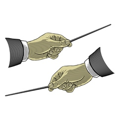 composer hands vector image