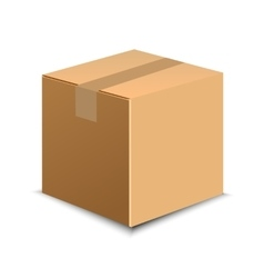 Brown carton delivery packaging box isolated on vector image vector image