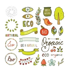 Modern hand drawn elements design organic vector