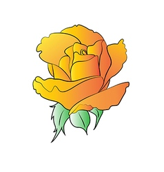 Rose yellow vector