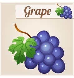 Grape detailed icon vector