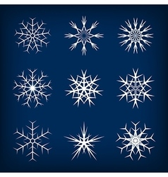 Set of snowflakes on dark blue background vector
