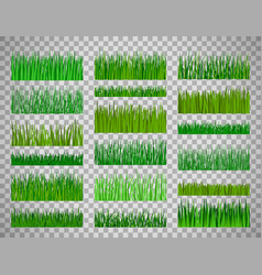 Grass border set on transparent background vector