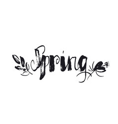 Hand drawn spring word lettering vector