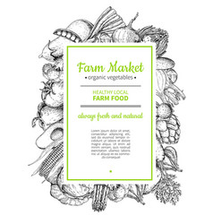 vegetable hand drawn vintage frame vector image vector image