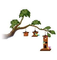 Birdhouses with birds on the branch vector