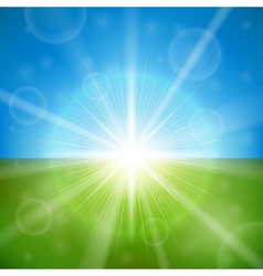 Bright summer sun vector