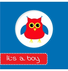 Baby shower card with red owl Its a boy vector image vector image