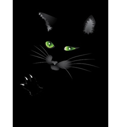 Black cat face vector image vector image