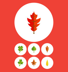 Flat icon maple set of leafage frond linden and vector