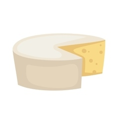 White cheese slices isolated vector image