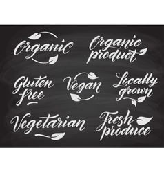 Hand drawn healthy food letterings stylized with vector