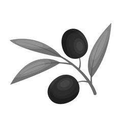 Branch of olives icon in monochrome style isolated vector image vector image