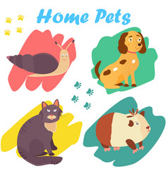 bright images of domestic animals cat snail dog vector image