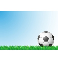sports grass field 01 vector image