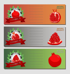 For ripe fruit red pomegranate vector