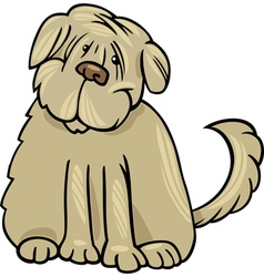 Shaggy terrier dog cartoon vector