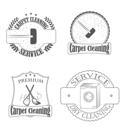 carpet cleaning vector image