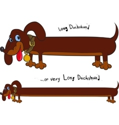 Long fun dachshund vector