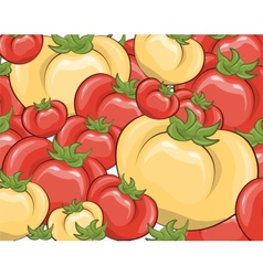 Red and yellow tomatoes background vector image