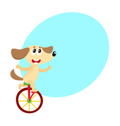 cute little dog puppy character riding bicycle vector image vector image