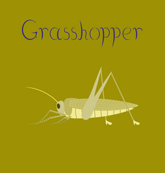 Flat on background grasshopper vector