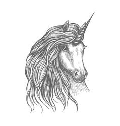 Unicorn fantastic horse sketch for tattoo design vector