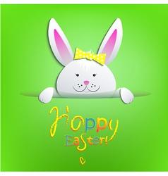 Rabbit vector image