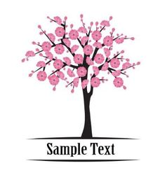 Japanese cherry tree blooming vector image