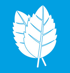 Two basil leaves icon white vector