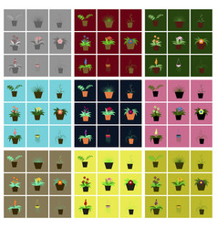 assembly flat icons houseplants vector image
