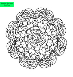 Mandala flower pretty vector
