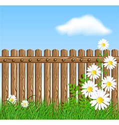Wooden fence on green grass with daisy vector