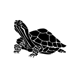 Hand drawn of turtle vector