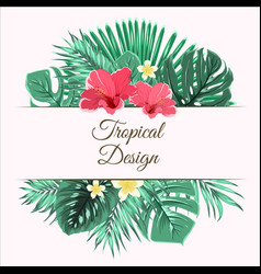 jungle tree leaves hibiscus and plumeria flowers vector image vector image