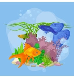 Underwater world background with fish vector image vector image